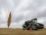 Понятие и общая характеристика правового режима земель сельскохозяйственного назначения