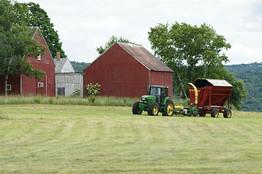 Проект и регистрация фермерского хозяйства